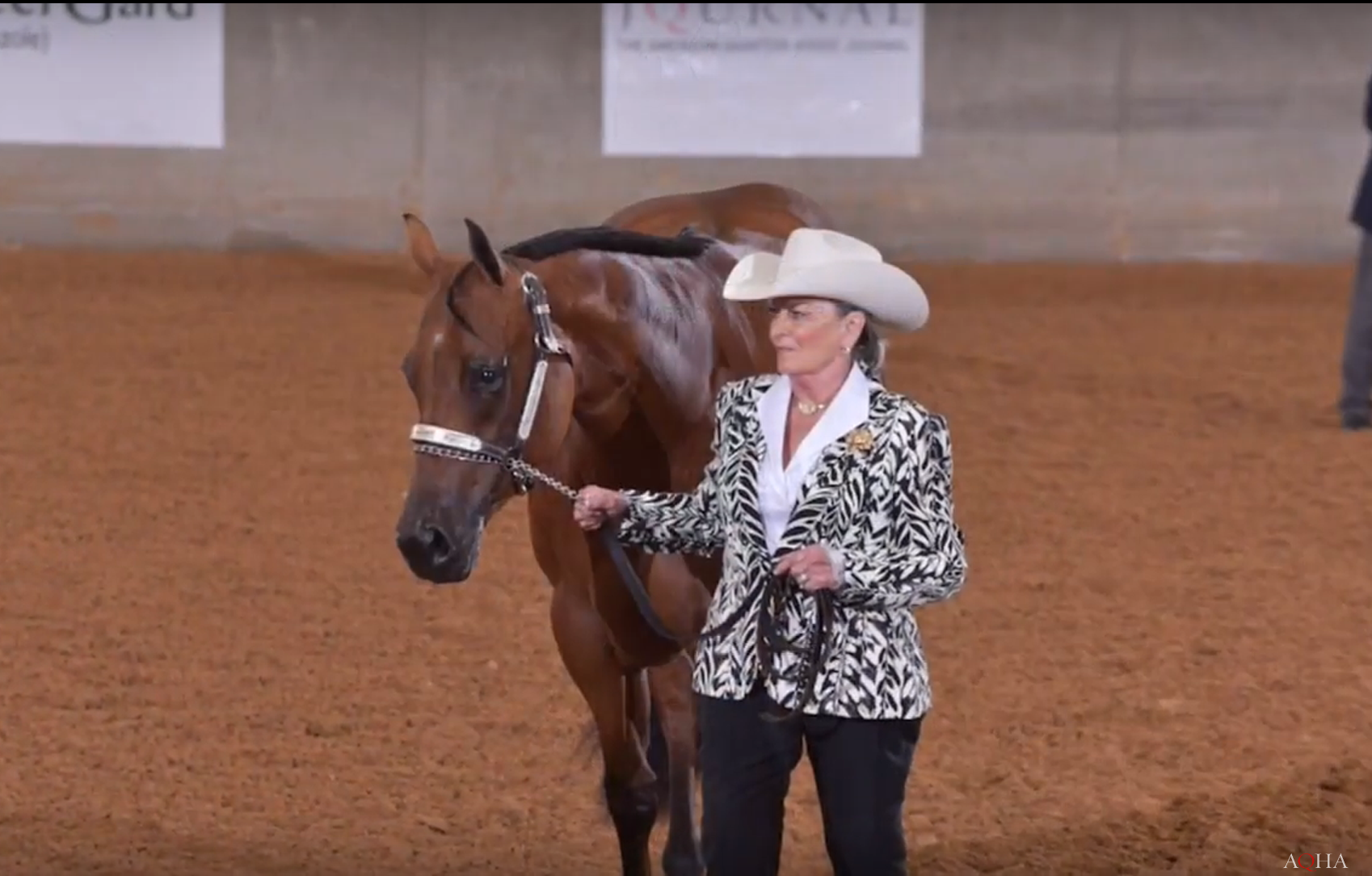 5fcb3224ac7c Entrigue and Mimsi Roe Coon take the gold in 2-year-old mares at the ...