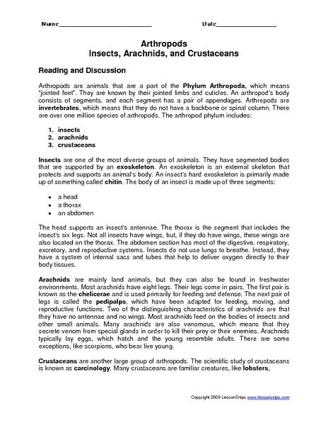 Arthropods Insects Arachnids And Crustaceans Worksheet Arthropods Lesson Lesson Planet Arthropods