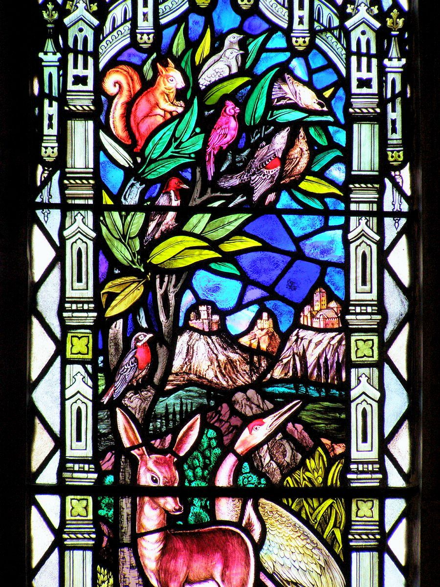 St. Francis stained glass window by William Morris & Co | Oh to be ...