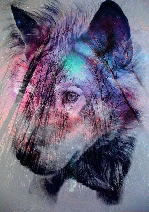 Background Galaxy Wolf Favim 2214715