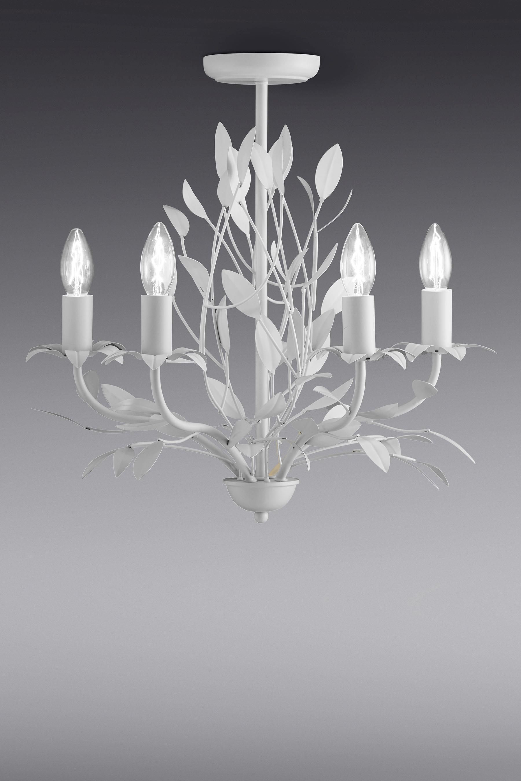 Buy arielle 4 light chandelier from the next uk online shop lounge buy arielle 4 light chandelier from the next uk online shop arubaitofo Choice Image