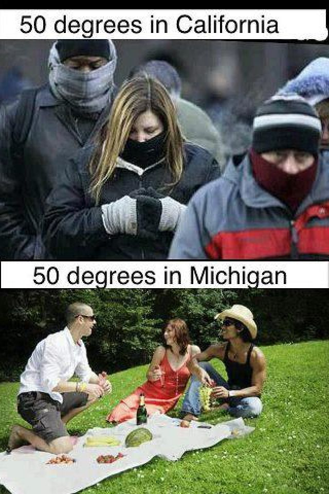 Image result for 50 degrees in michigan meme