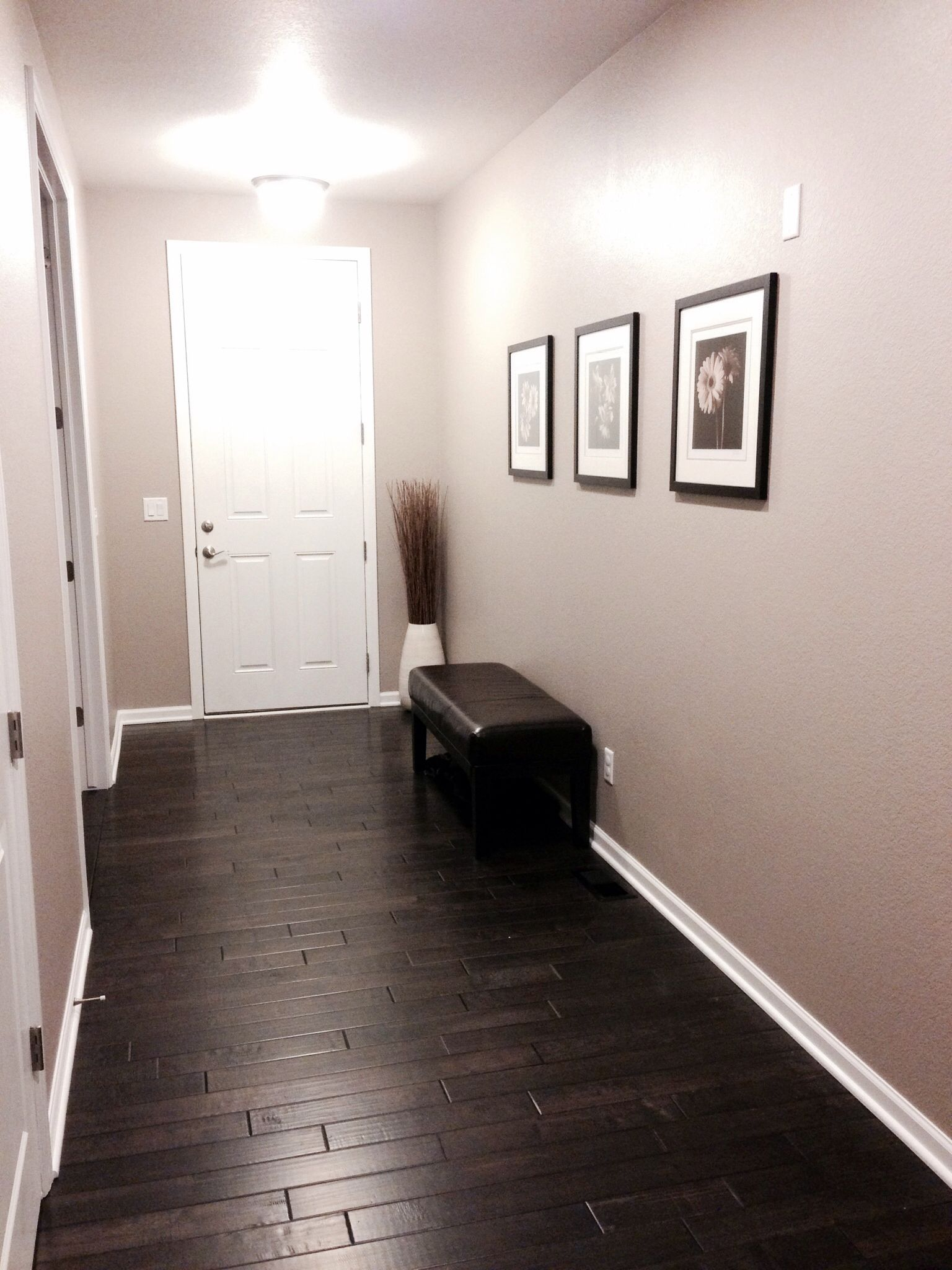 Front Entry With Dark Distressed Hardwood Floors Sherwin