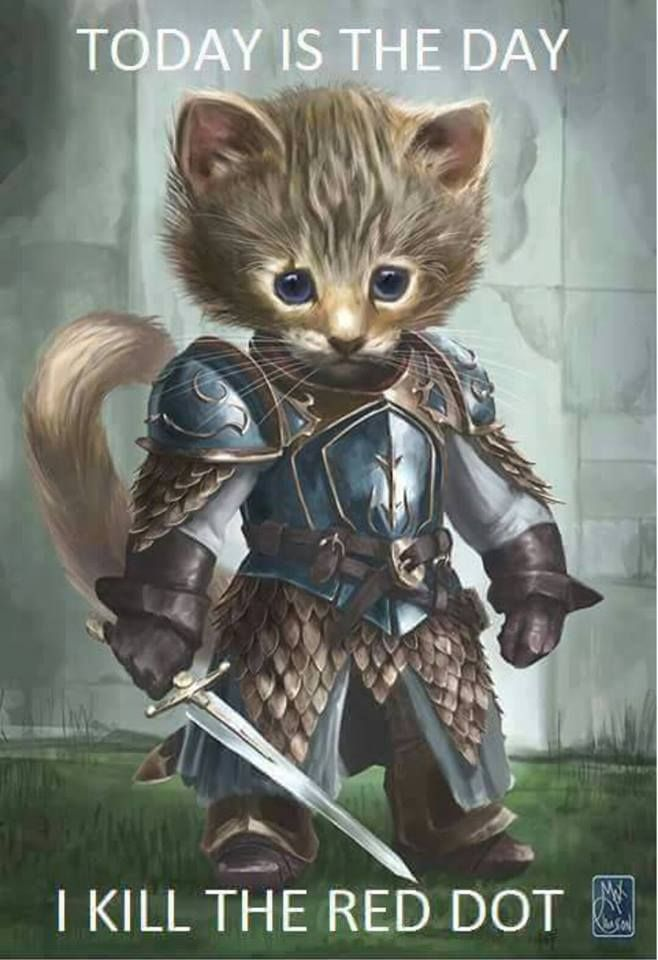 """Humor for cat lovers and cool painting illustration for artist! Quote from cat in armor, """"Today is the day I killed the red dot."""" Cat lovers will understand, lol."""