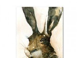 Hare portrait, watercolour