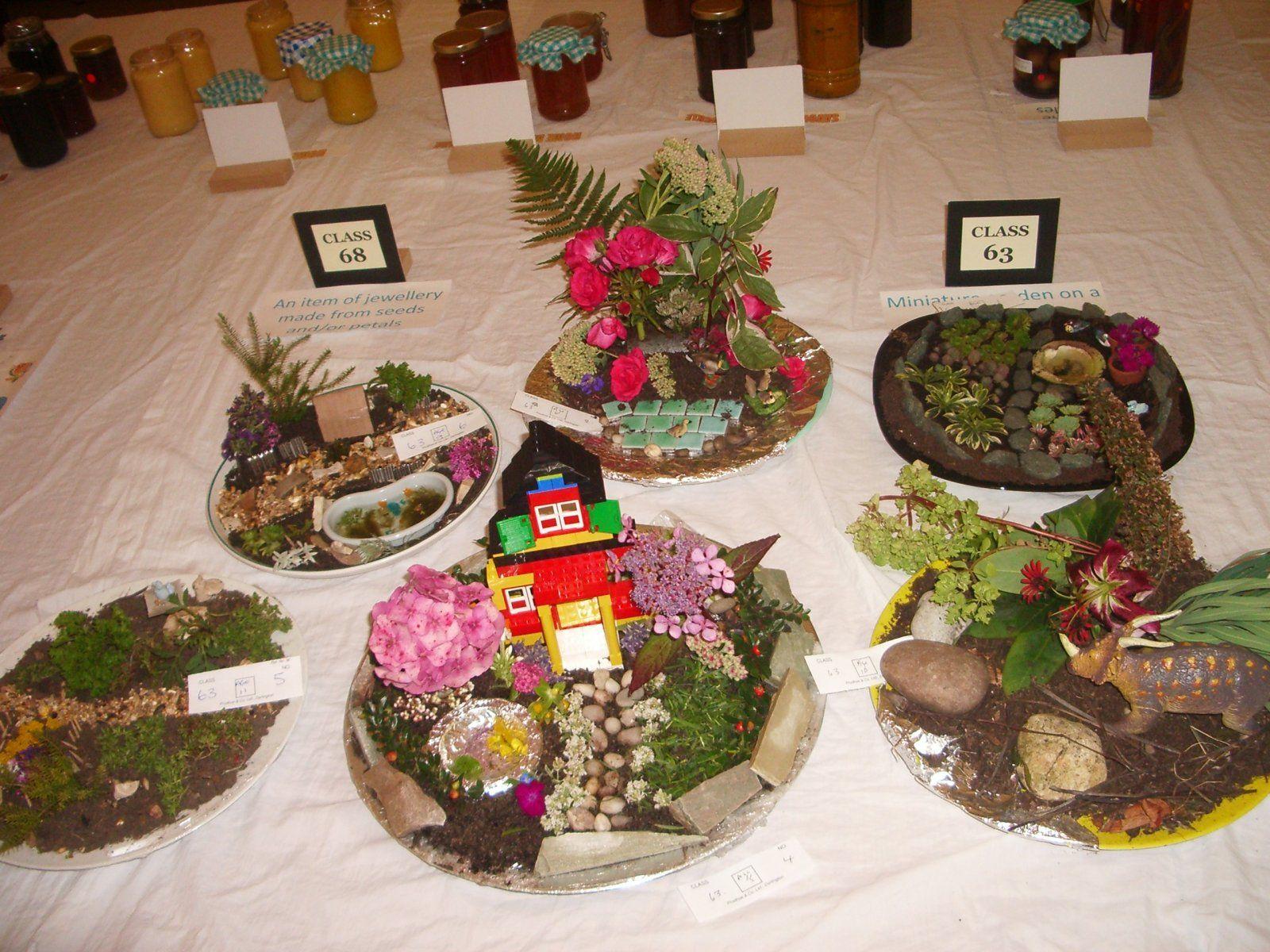 Best Plate Gardens Images On Pinterest Fairies Garden Fairy