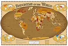 Endonym Map World Map Of Country Names In Their Local Languages - Languages of the world list by country