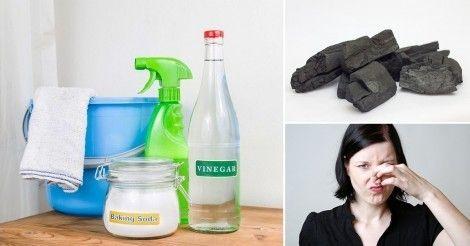 C mo quitar naturalmente el olor a humedad de las habitaciones hogar consejos tips pinterest - Como quitar la humedad de mi casa ...
