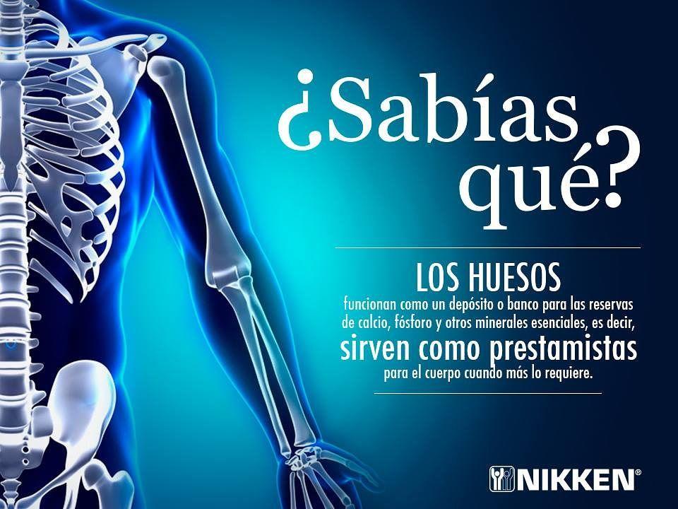 Soporte óseo Huesos Y Articulaciones Saludables Consejos Para La Salud Higiene Y Salud Como Cuidar La Salud