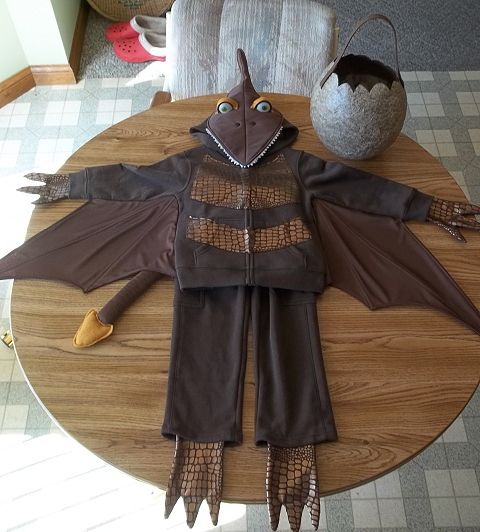 Homemade Costumes Patterns