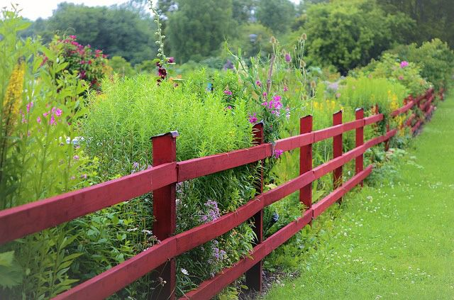 Keep Out the World with 118 Fencing Ideas 1 1 Don\u0027t Fence Me In