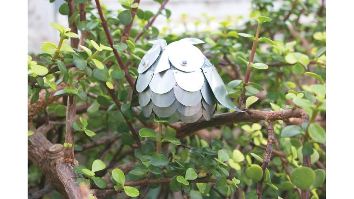 Soda Can Owl Creative gardening, Crafts