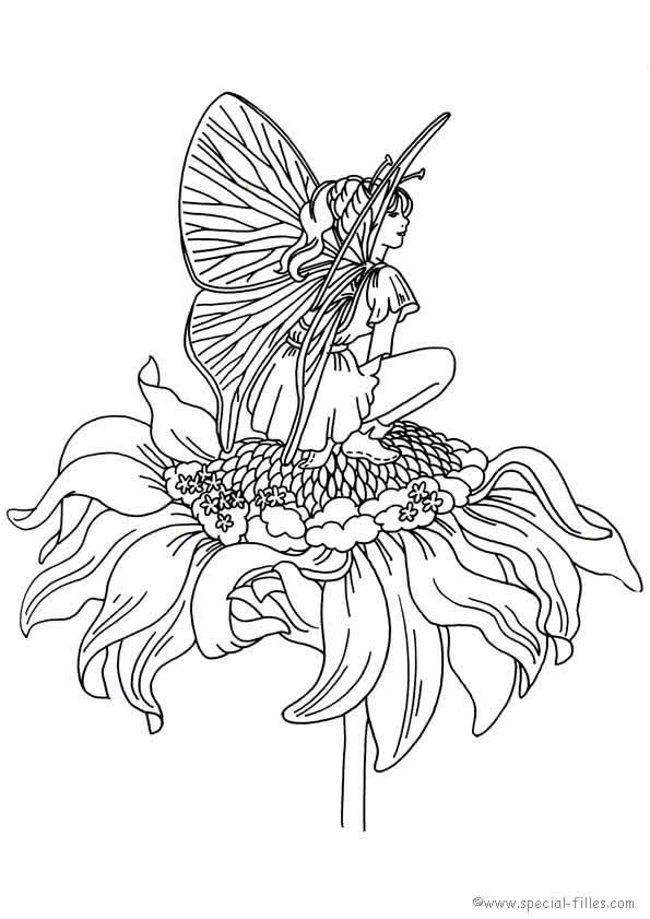 Fee Kleurplaat Coloring Outside The Lines Coloring Pages Fairy