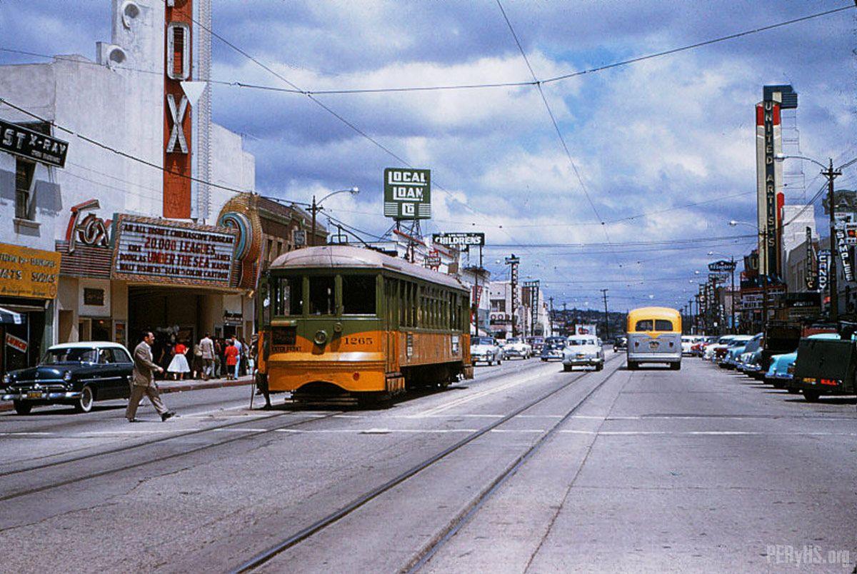Culver City To Santa Monica Train Dogs