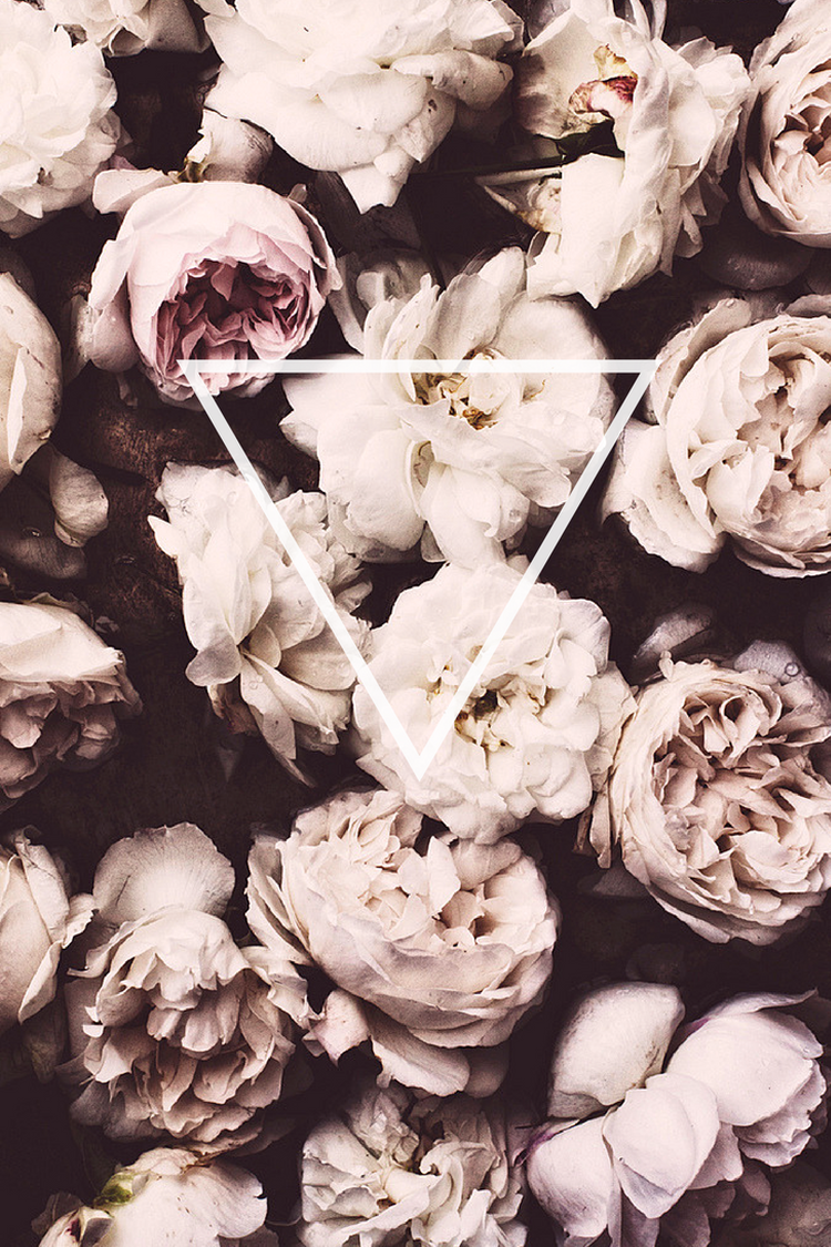 Iphone wallpaper tumblr floral -  Roses Triangle White Black Purple Oldrose Hipster Tumblr