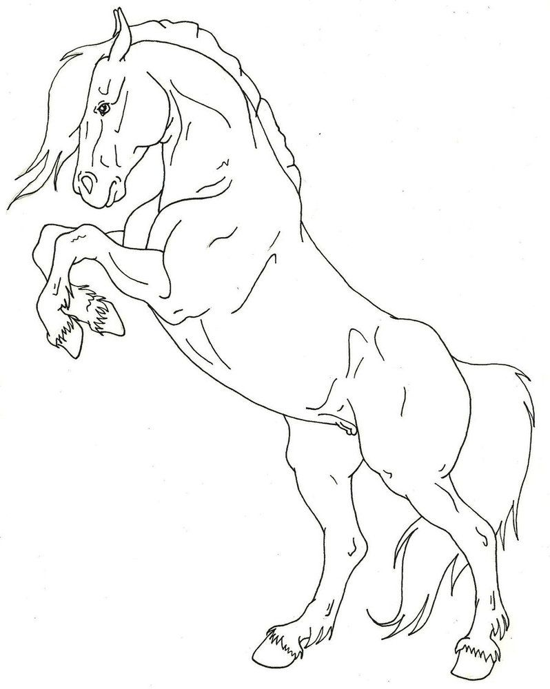 Https Www Deviantart Com Kholran Art Rearing Horse Lineart 280212876 Horse Coloring Pages Horse Rearing Horse Drawings