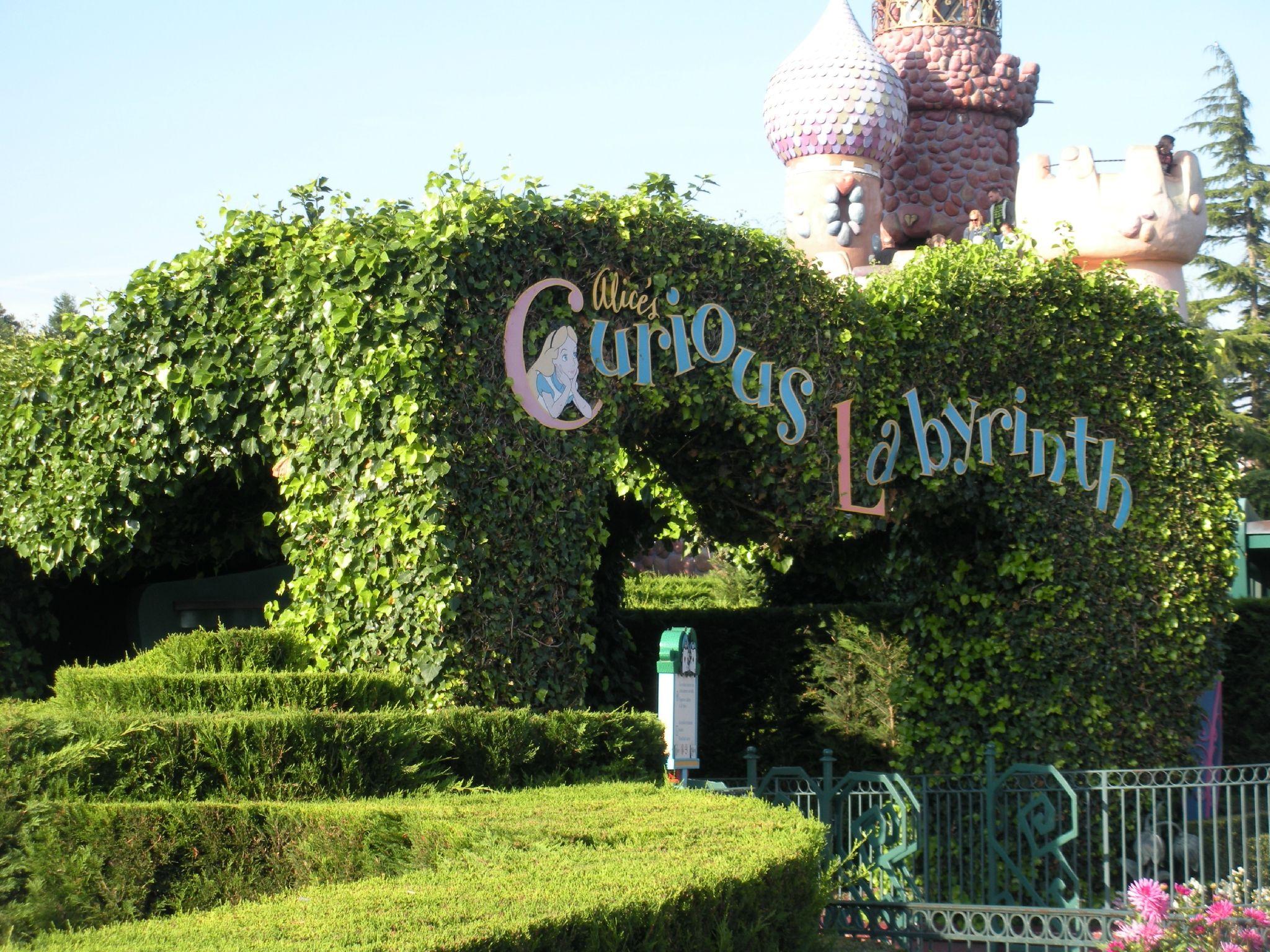 Le Labyrinthe D Alice Labyrinthes Disneyland Disneyland