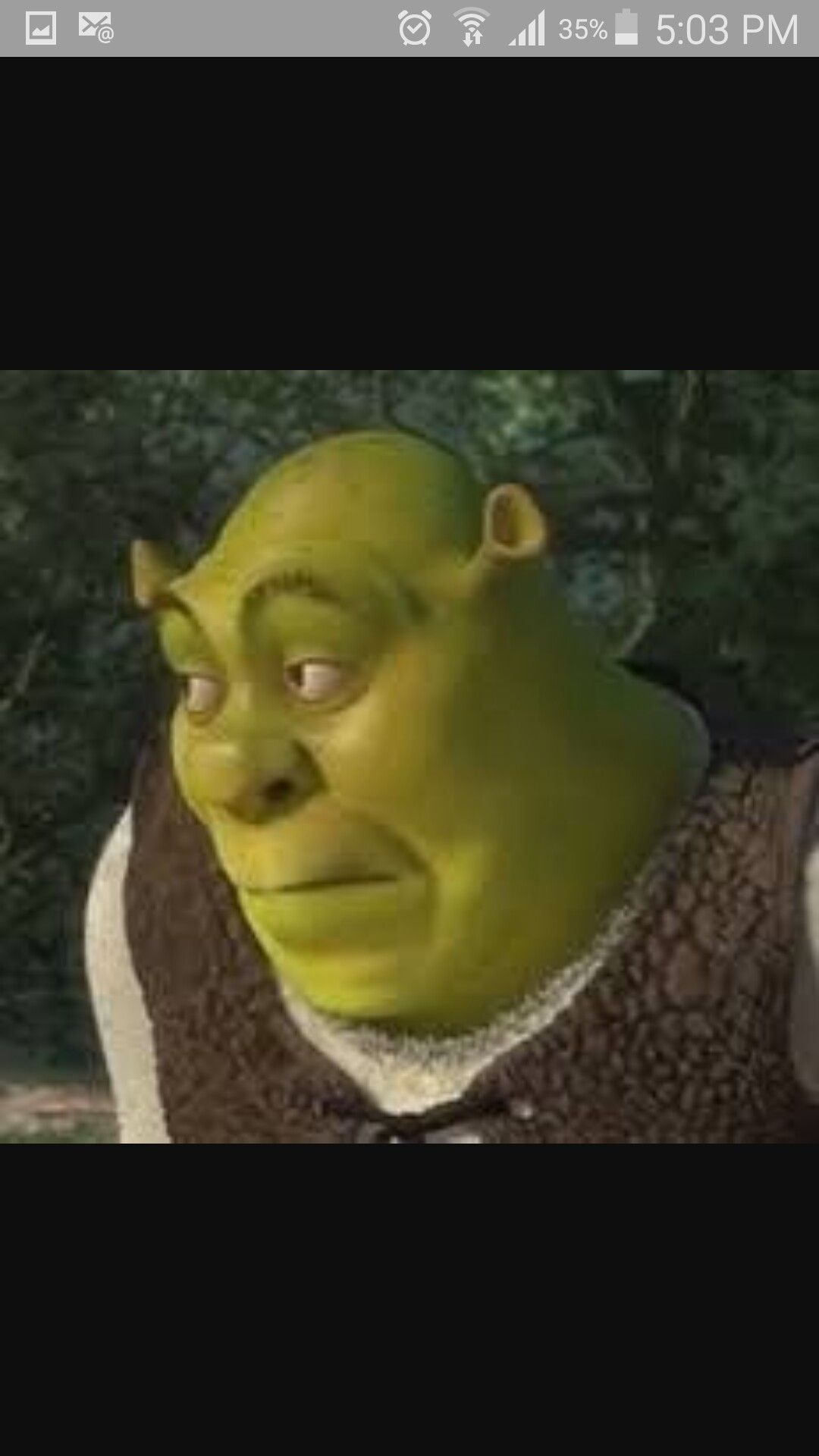 Shrek memes en espa ol memes fun pinterest shrek - Anne de shrek ...