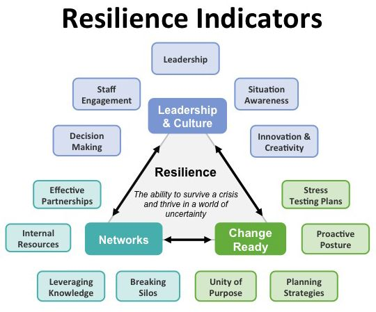 Organisational Resilience Diagram Auto Electrical Wiring Diagram