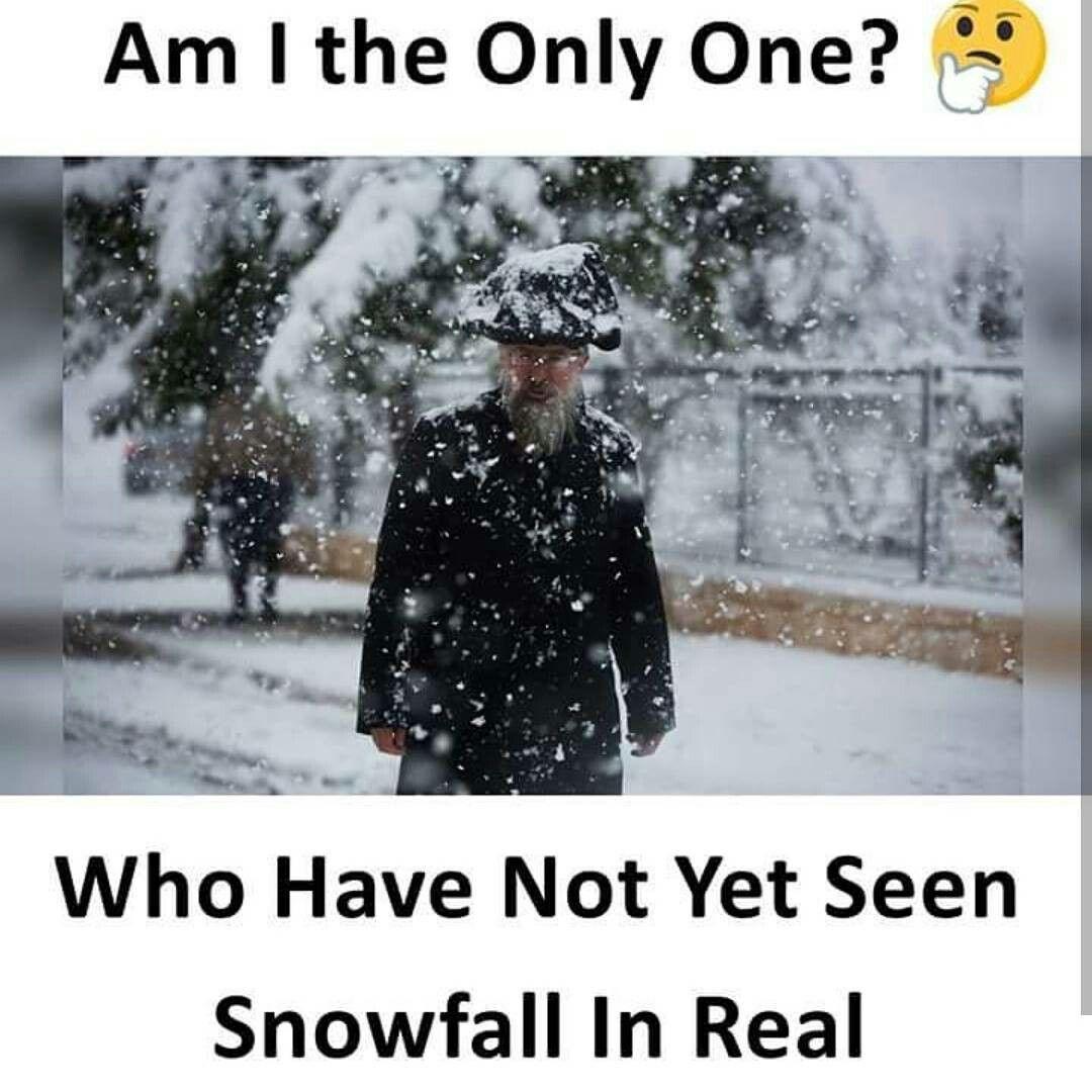 Include Me Winter Jokes Snowfall Love Breakup