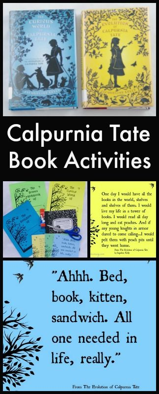 calpurnia tate book activities children s book related crafts and rh pinterest com Book Discussion Chart Generic Book Club Questions