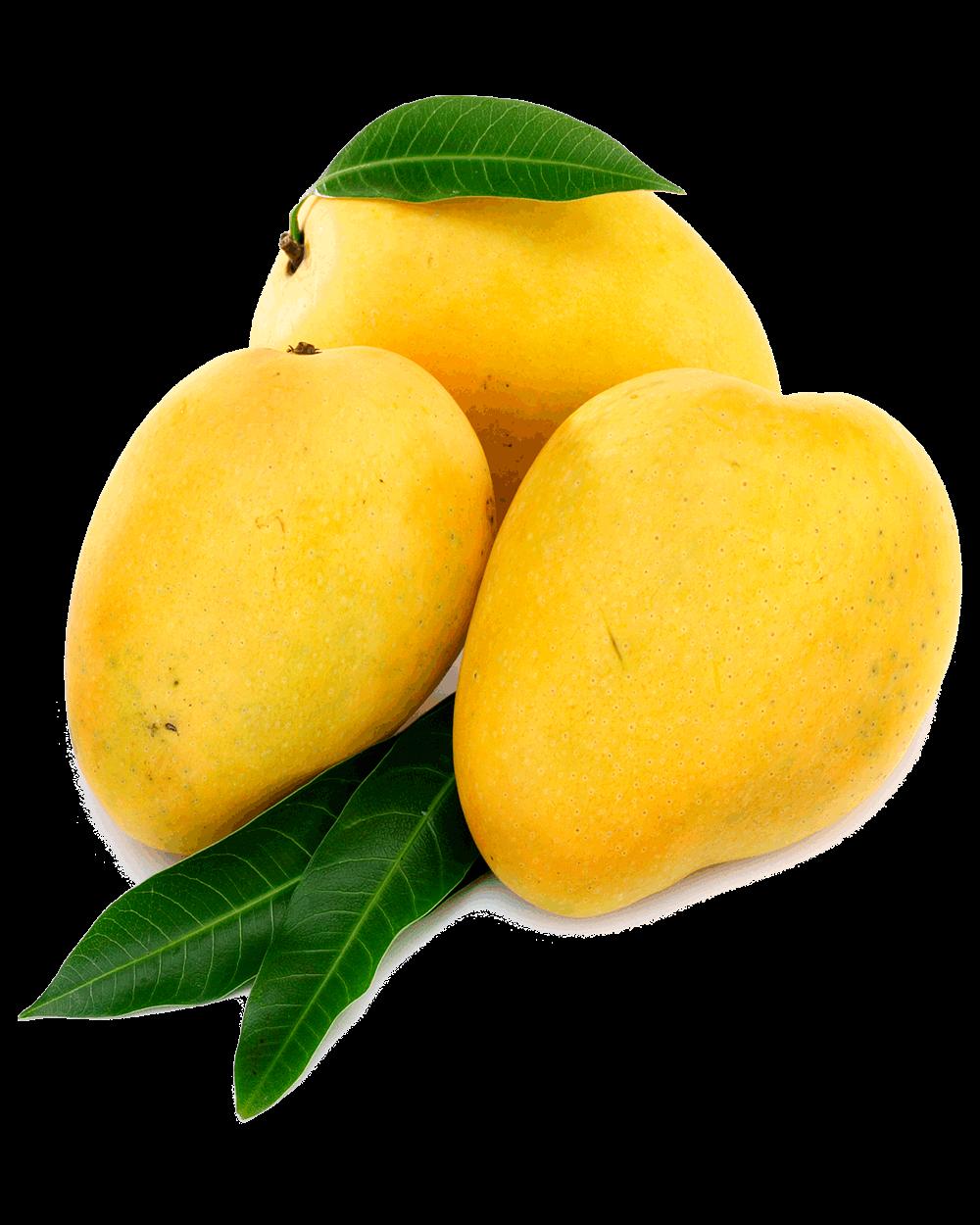 Delicious Mango Mango Png Image Mango Clipart Fruit Mango Fruits Online