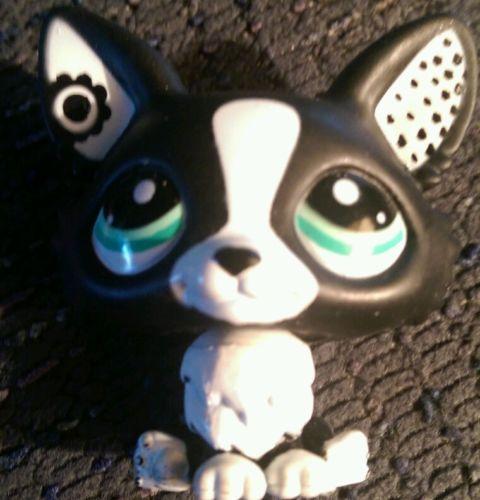 Littlest Pet Shop Rare Corgi Black and White #2245 HASBRO