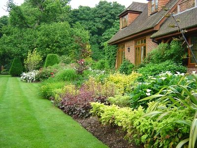 Garden Design North Facing north border design - google search | north facing border | pinterest