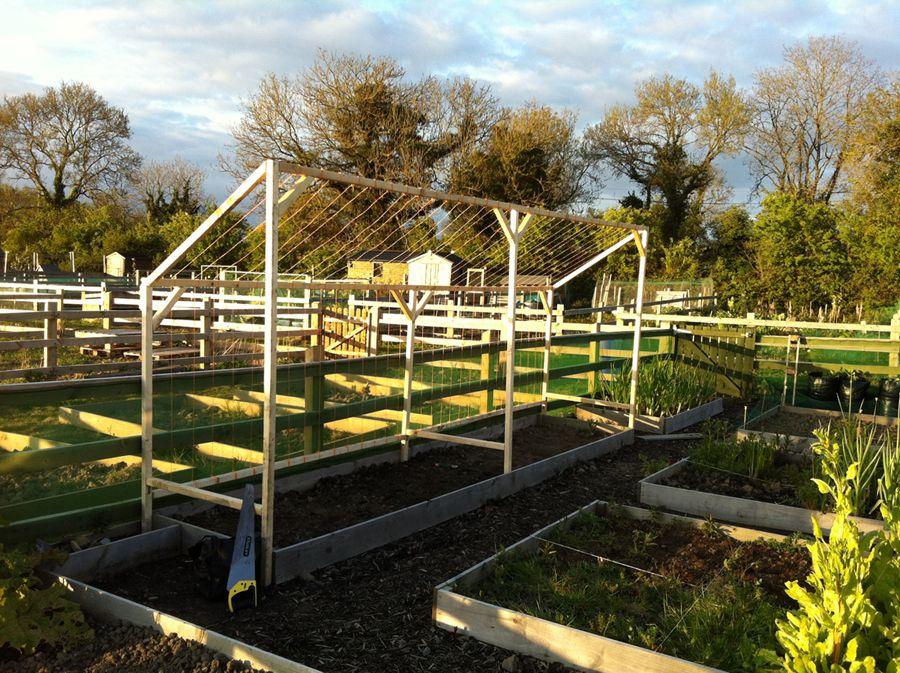 Runner Bean Support Climbing Frame - Garden Design Ideas
