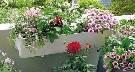 balkonblumen richtig einpflanzen blumenk sten dekorieren balkon blumen balkon und garten. Black Bedroom Furniture Sets. Home Design Ideas