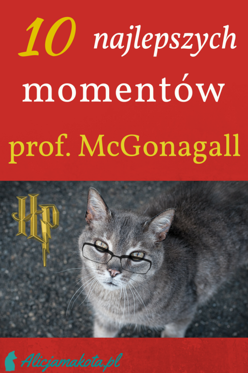 10 Najlepszych Momentow Z Profesor Mcgonagall Harry Potter Harry Potter Harry Potter