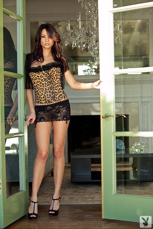 Jennie Reid Beautiful Brunettes Corset Fashion Short