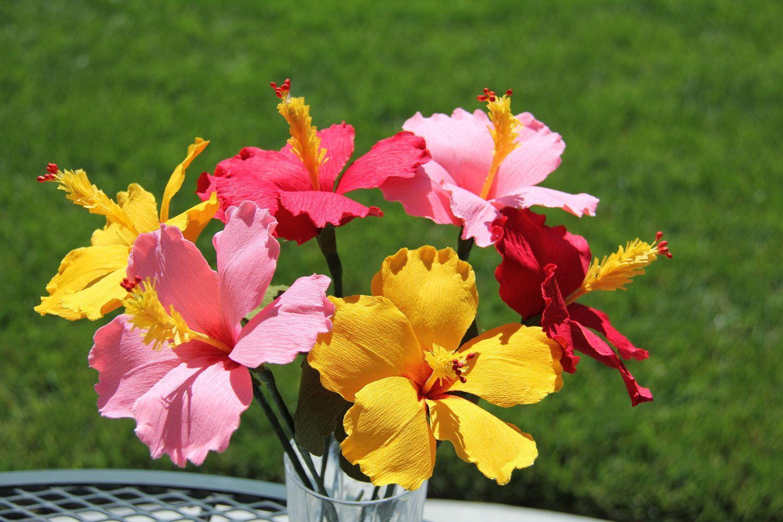 Hibiscus flowers paper flowers crepe paper flowers via