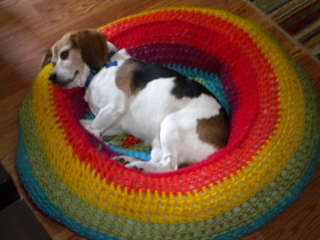 Large Crochet Rainbow Dog Bed Maybe With A Pool Noodle As Basis 3