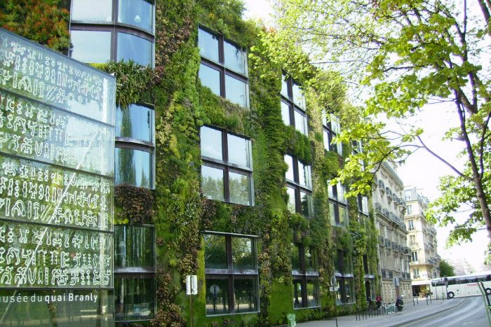 Green facades are often described as lush vertical oases, but in