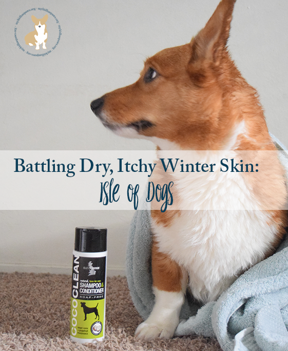Battling Dry Itchy Winter Skin Isle Of Dogs Dogs Isle Of Dogs Winter Itchy Skin