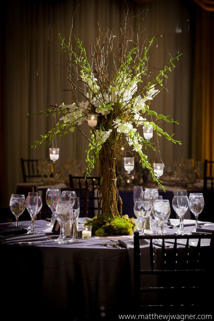 Tree Of Curly Willow Moss And White Dendrobium Orchids By Azalea Floral Design Moss Centerpieces White Dendrobium Orchids Tree Centerpieces