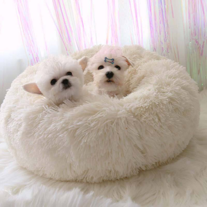 Brilliant Soft Plush Pet Bed All Things Pets Dog Bed Dogs Dog Cat Evergreenethics Interior Chair Design Evergreenethicsorg