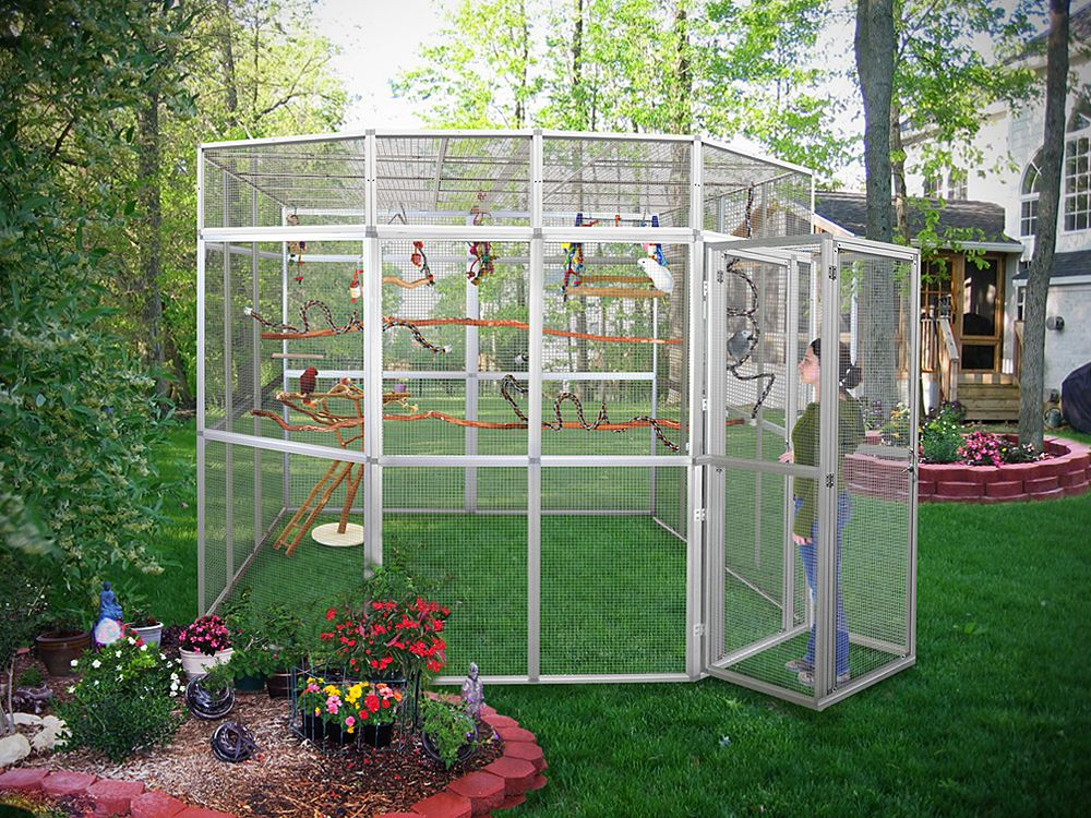 how to build an outdoor bird aviary … Pinteres…