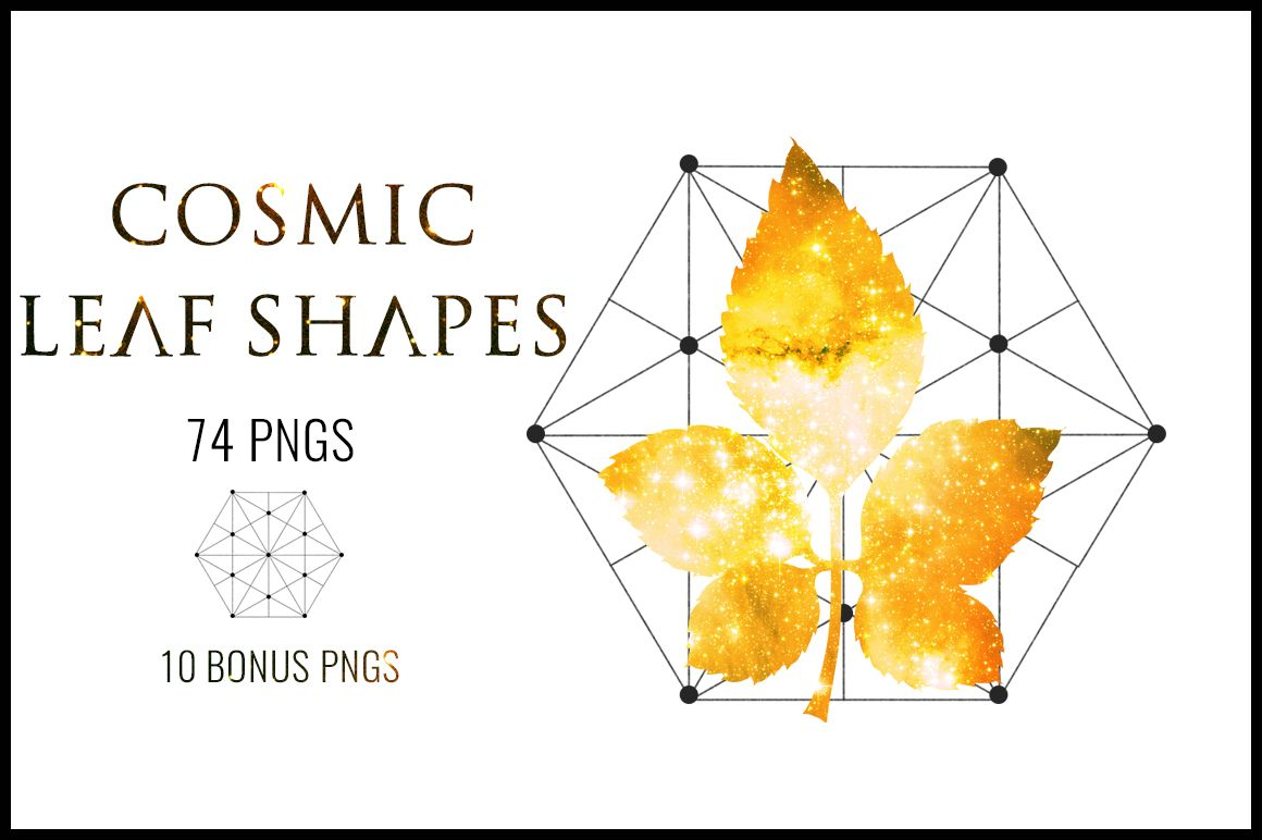 cosmic leaf shapes clipart commercial use leaf shapes clipart graphics leaf shapes clipart [ 1160 x 772 Pixel ]