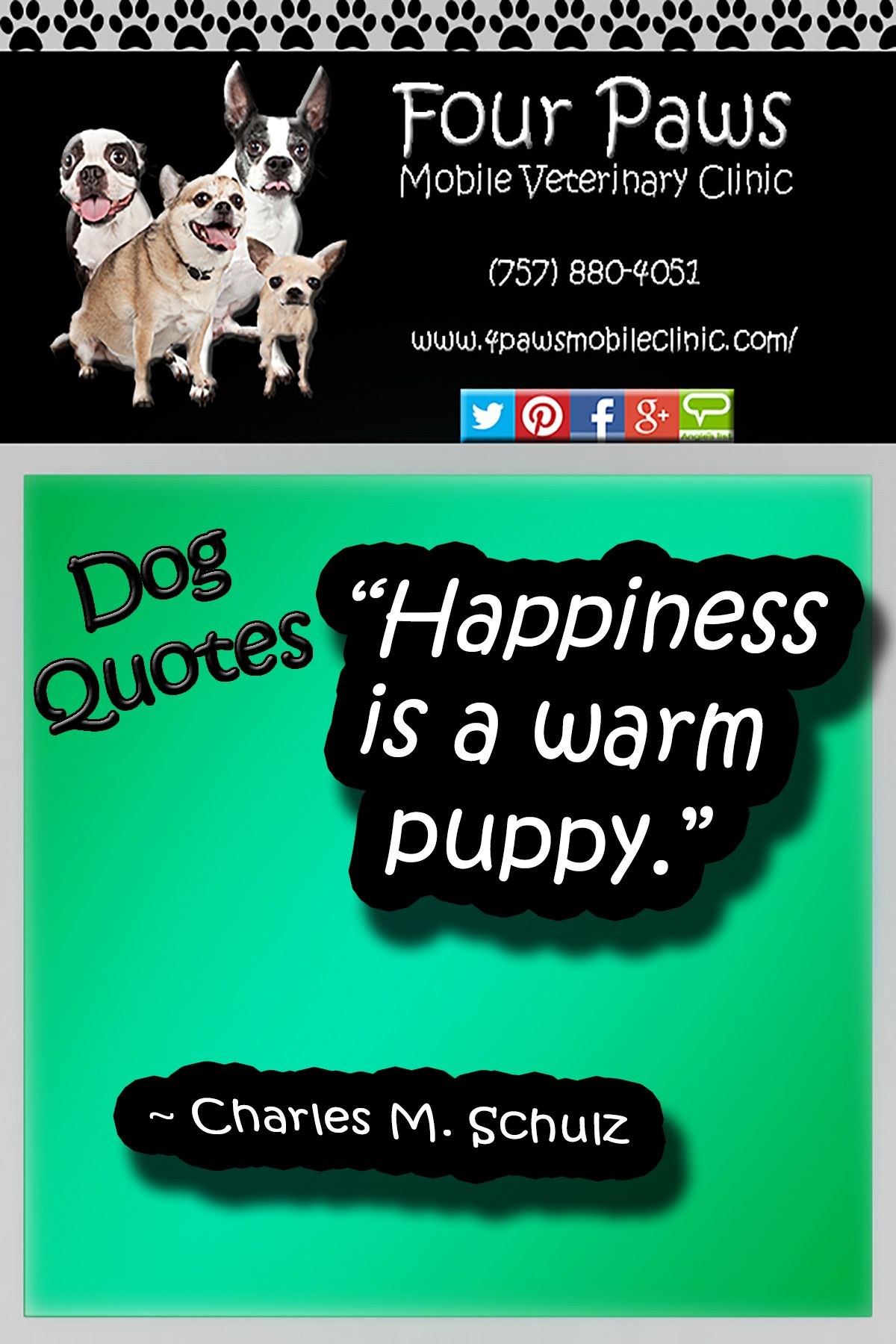 Pet Quotes Animal quotes, Dog quotes, This is us quotes