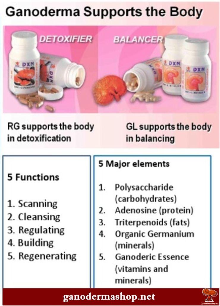 Ganoderma supports the body in 2020 Ganoderma, Body