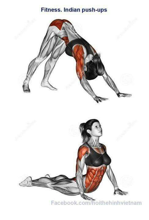 Yoga indian push up | Joga Ashtanga | Pinterest | Yoga, Übungen und ...