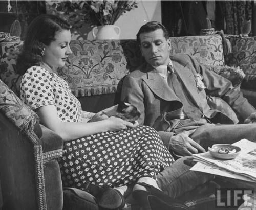"""actor Laurence Olivier relaxing w. his actress wife Vivien Leigh & their Siamese cat in living room at home."""" Photograph by Hans Wild, London..."""