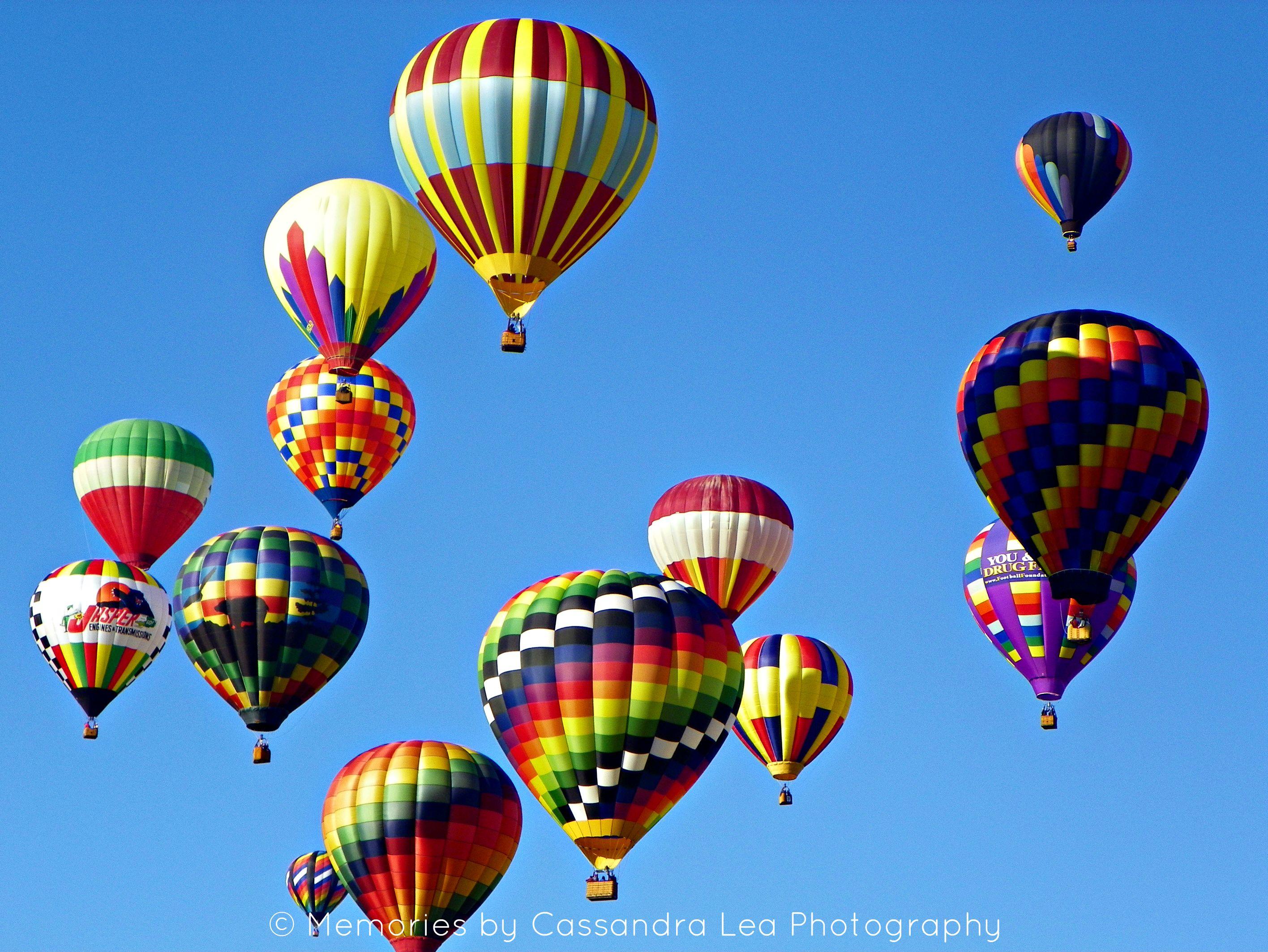 Hot Air Balloons rising at the 2011 Carolina BalloonFest