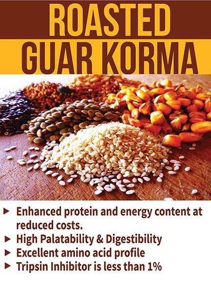 Poultry Feed Manufacturers In India Roasted Guar Korma