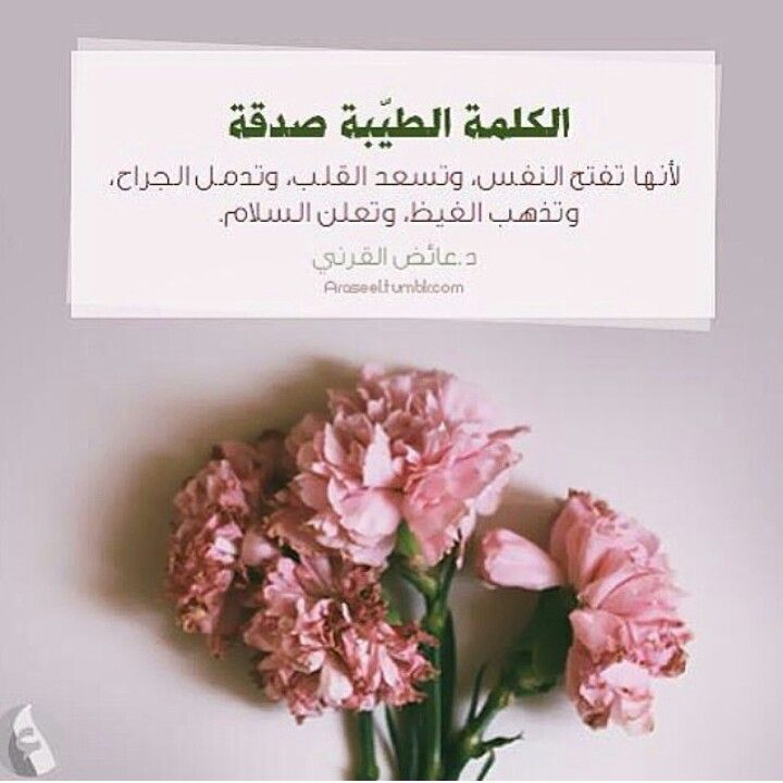 Pin By Eslam Ashour On Saying Beautiful Words Place Card Holders Note To Self