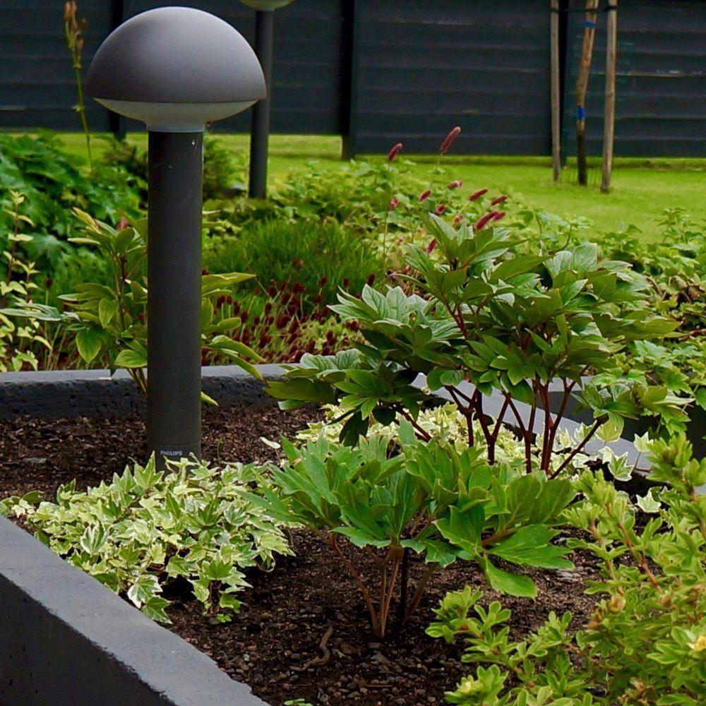 Urban Vegetable Gardening For Beginners: Nordic Garden Design, Modern Garden