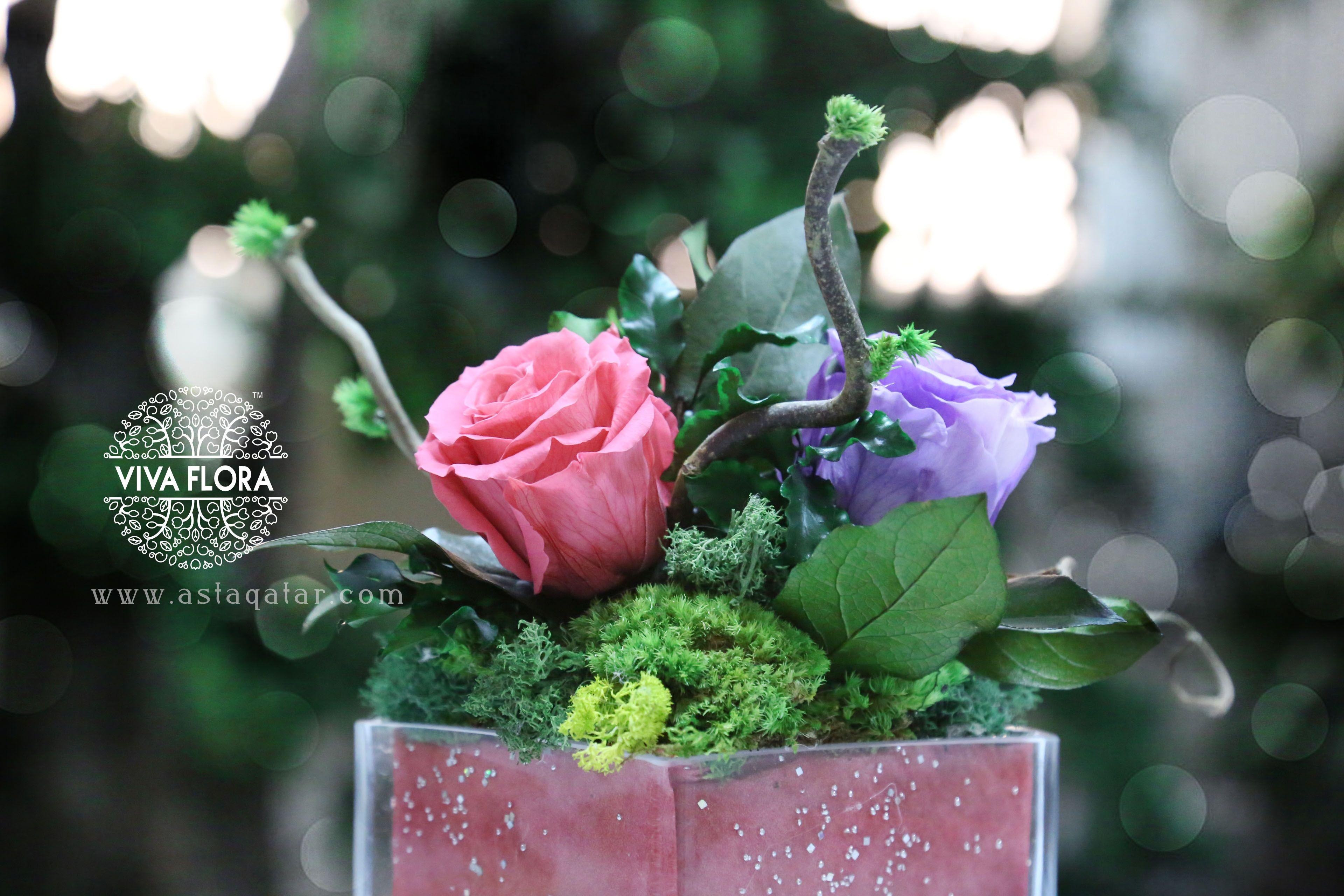 Viva Flora Occasional Preserved Flower Arrangements - Doha , Qatar