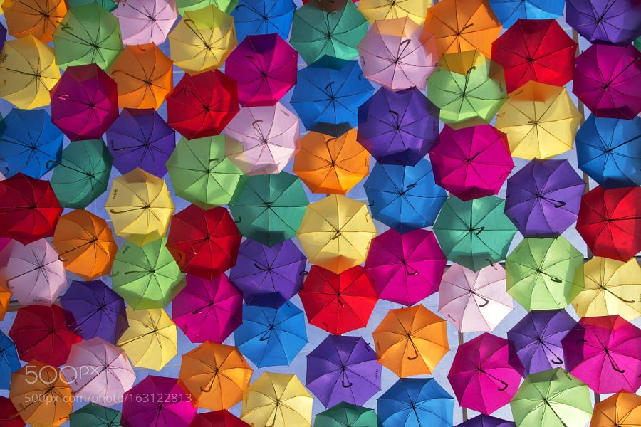 Festival of umbrellas by telmopedrosa